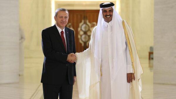 Cumhurbaşkanı Recep Tayyip Erdoğan ve  Katar Emiri Şeyh Tamim Bin Hamad Al Thani - Sputnik Türkiye