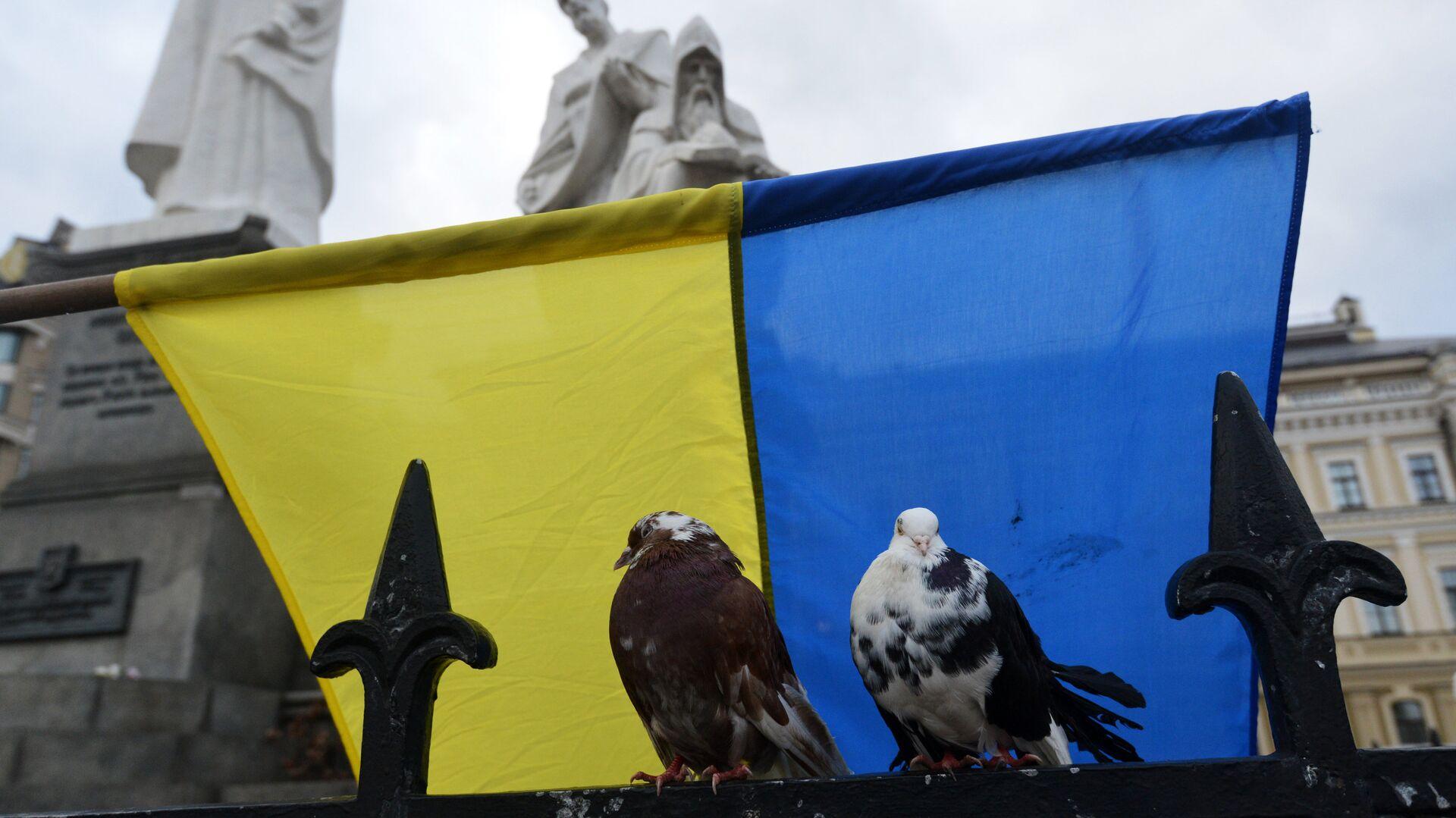 Ukrayna bayrağı - Sputnik Türkiye, 1920, 25.09.2021
