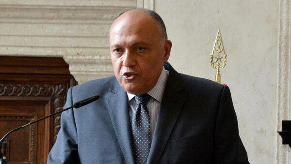 Mısır Dışişleri Bakanı Samih Şükri - Sputnik Türkiye