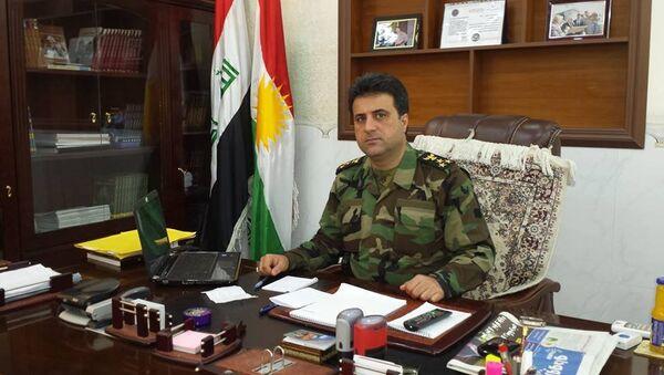 Irak Kürt Bölgesel Yönetimi Peşmerge Bakanlığı sözcüsü Helgurt Hikmet - Sputnik Türkiye
