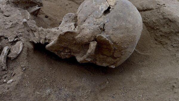 İnsanlık tarihindeki savaşlara dair en eski kanıt Kenya'da bulundu. - Sputnik Türkiye