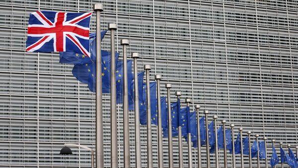 İngiltere - Avrupa Birliği (AB) - Sputnik Türkiye