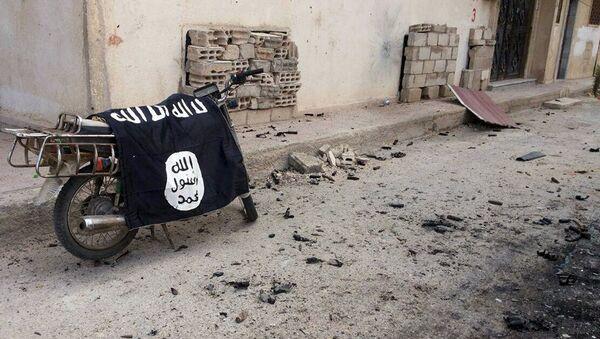 IŞİD - Palmira - Sputnik Türkiye