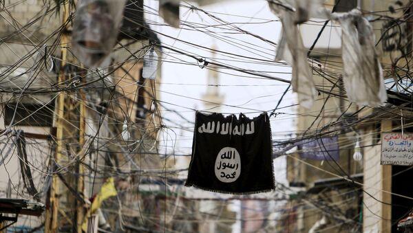 Elektrik tellerinden sarkan bir IŞİD bayrağı. - Sputnik Türkiye