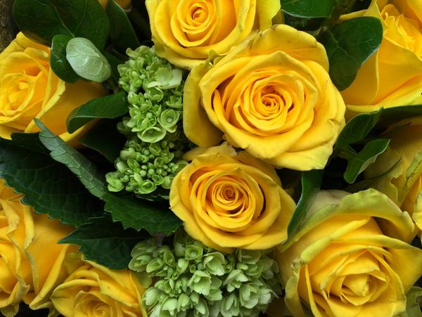 Sarı güller - Sputnik Türkiye