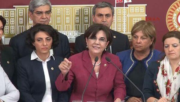 CHP Milletvekili Gaye Usluer - Sputnik Türkiye