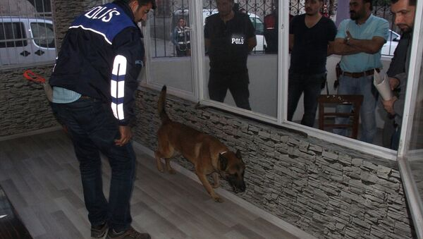 Adana'da uyuşturucu operasyonu - Sputnik Türkiye