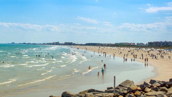Florida'da bir kumsal. - Sputnik Türkiye