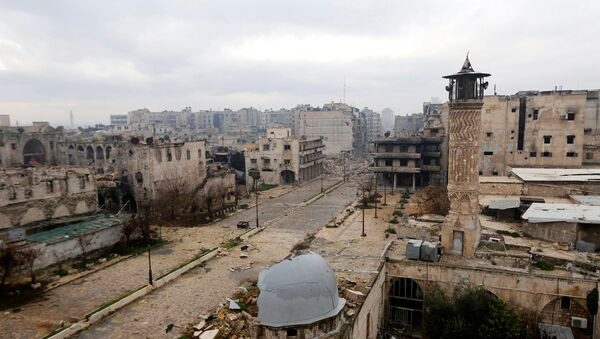 Halep. - Sputnik Türkiye