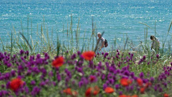 Kırım'ın Feodosiya kentindeki deniz kıyısında bir çiçek tarlası. - Sputnik Türkiye