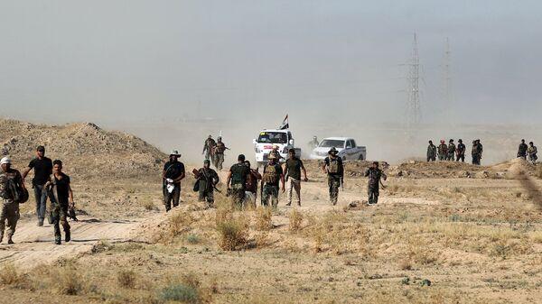 Irak'ta ordu ve hükümet yanlısı güçler Felluce'yi IŞİD'den geri almak için ilerliyor. - Sputnik Türkiye
