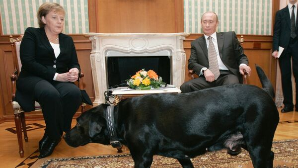 Almanya Başbakanı Angela Merkel ve Rusya Devlet Başkanı Vladimir Putin - Sputnik Türkiye