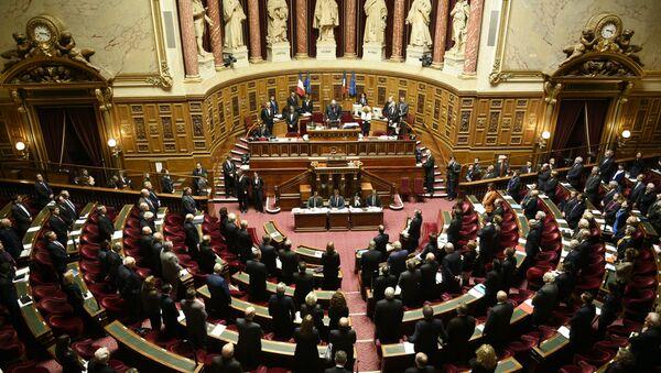 Fransa Senatosu. - Sputnik Türkiye