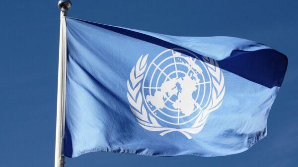 Birleşmiş Milletler bayrağı - Sputnik Türkiye