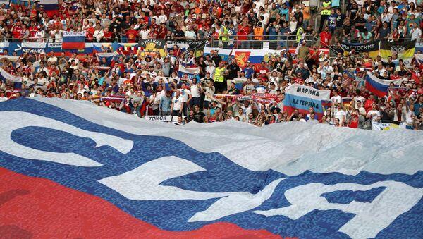 EURO 2016- Rusya - Sputnik Türkiye