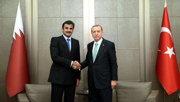 Türkiye Cumhurbaşkanı Recep Tayyip Erdoğan- Katar Emiri Şeyh Temim bin Hamad El Sani - Sputnik Türkiye