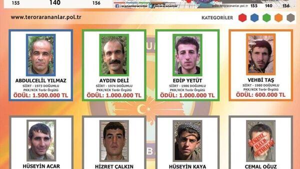 Siirt Valiliği, üzerinde aranan PKK'lıların bulunduğu fotoğrafları ve ihbarcılara verilecek ödül miktarının yer aldığı 100 bin Türkçe-Kürtçe broşür bastırdı. - Sputnik Türkiye
