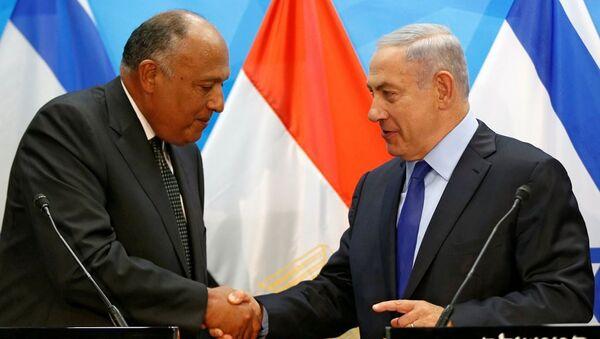 Mısır Dışişleri Bakanı Samih Şükri ve İsrail Başbakanı Benyamin Netanyahu - Sputnik Türkiye