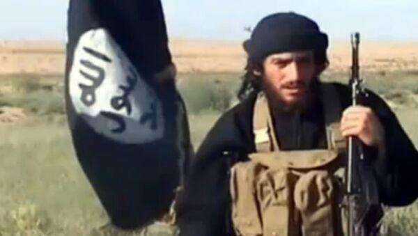 IŞİD'in iki numarası Adnani, Rusya'nın operasyonu ile öldürüldü - Sputnik Türkiye