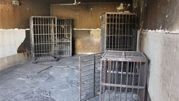 IŞİD Irak'ta esir aldığı kişileri kafeslere kapattı - Sputnik Türkiye