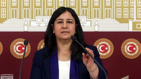 HDP Grup Başkanvekili Çağlar Demirel - Sputnik Türkiye