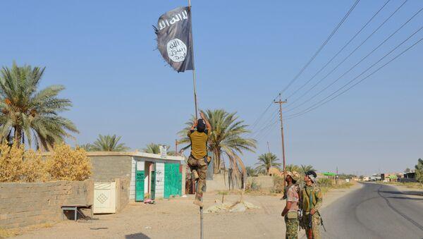 Irak askerleri Anbar'daki IŞİD bayrağını indirdi. - Sputnik Türkiye