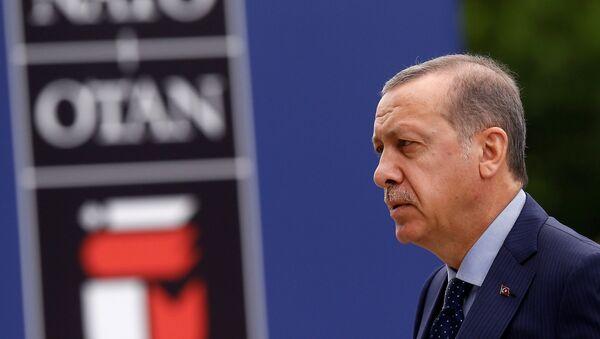 Recep Tayyip Erdoğan / NATO - Sputnik Türkiye