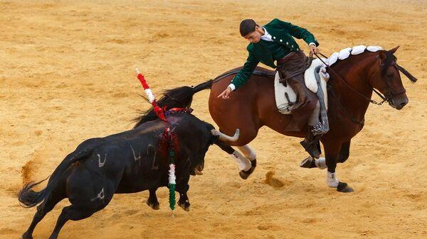boğa güreşi-İspanya-Katalonya-Madrid - Sputnik Türkiye