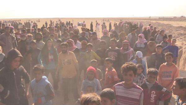 Mosul'dan kaçan mülteciler  Suriye'ye gitmeye başladılar. - Sputnik Türkiye