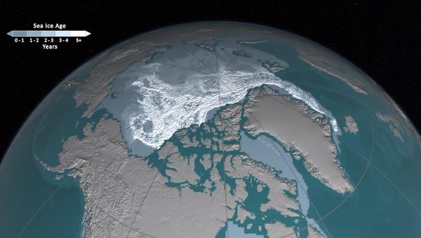 Kuzey Buz Denizi'ndeki buzulların erimesi - Sputnik Türkiye