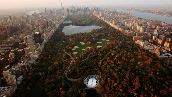 New-York'ta güneşin doğduğu anda Cenrtal Park manzarası. - Sputnik Türkiye