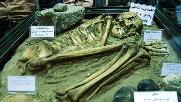 İran'da 7.500 yaşındaki iskelet sergilendi - Sputnik Türkiye