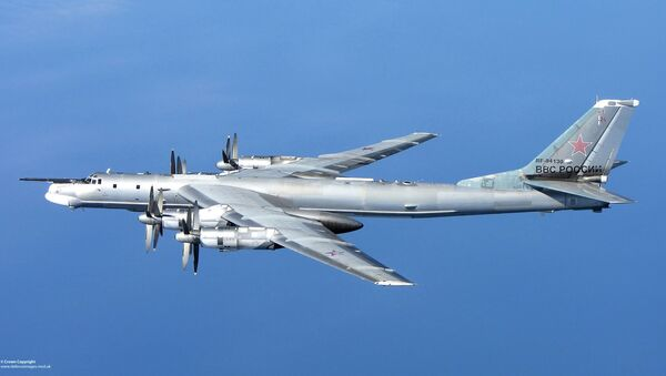Tu-95 stratejik bombalama uçakları - Sputnik Türkiye