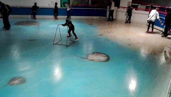 Japonya'da dondurulmuş balıklı buz pisti - Sputnik Türkiye
