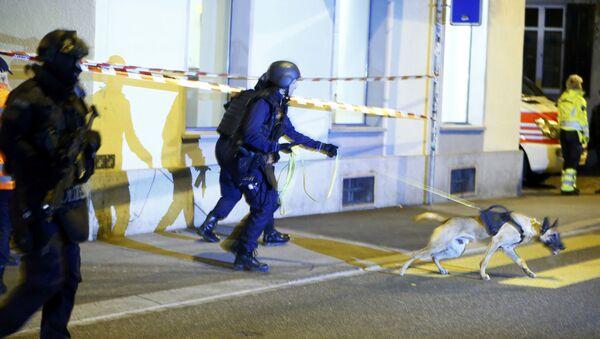 İsviçre polisi - Sputnik Türkiye