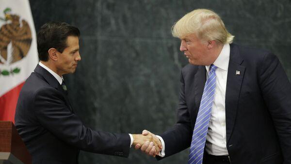 ABD'nin yeni başkanı Donald Trump ve Meksika Devlet Başkanı Enrique Pena Nieto - Sputnik Türkiye