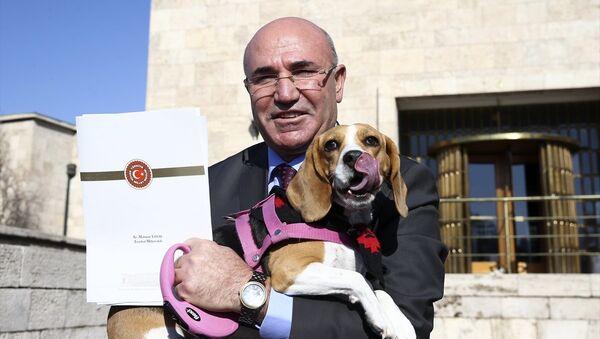 CHP İstanbul Milletvekili Mahmut Tanal, köpeği Dora ile Meclis'te basın toplantısı düzenledi. - Sputnik Türkiye