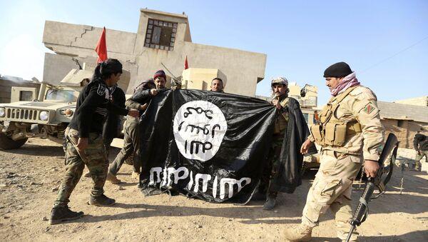 Irak ordusu - IŞİD - Sputnik Türkiye