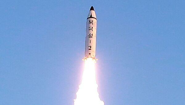 500 metre uçup füze Japon Denizi'ne düştü. - Sputnik Türkiye