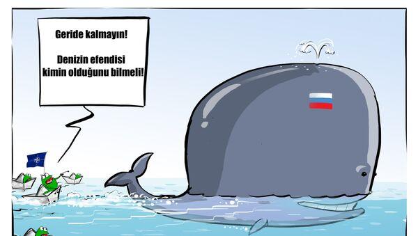 'Suriye'de 50'den fazla NATO gemisi Amiral Kuznetsov'a eşlik etti' - Sputnik Türkiye