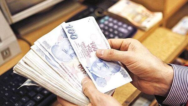 Türk Lirası banknot - Sputnik Türkiye