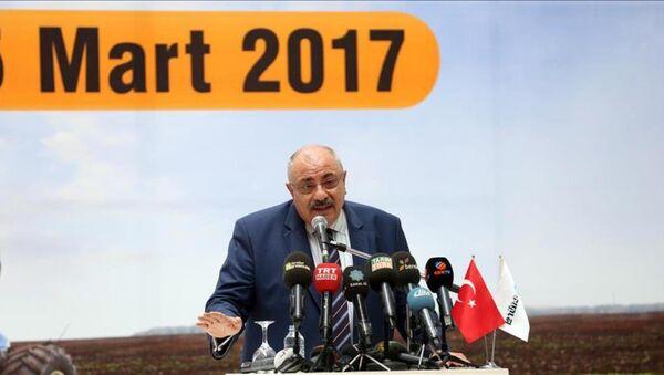 Tuğrul Türkeş - Sputnik Türkiye