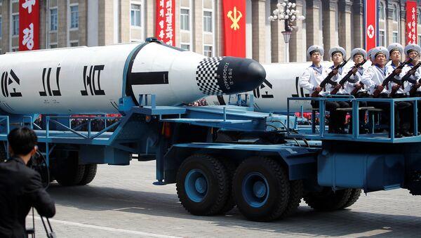 Kuzey Kore'de 'Güneş Günü' kutlamaları - Sputnik Türkiye