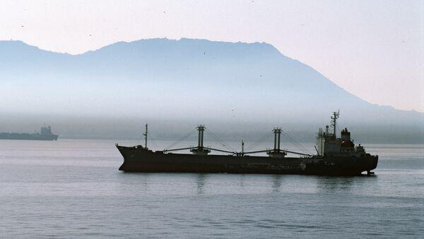 Kargo gemisi - Sputnik Türkiye