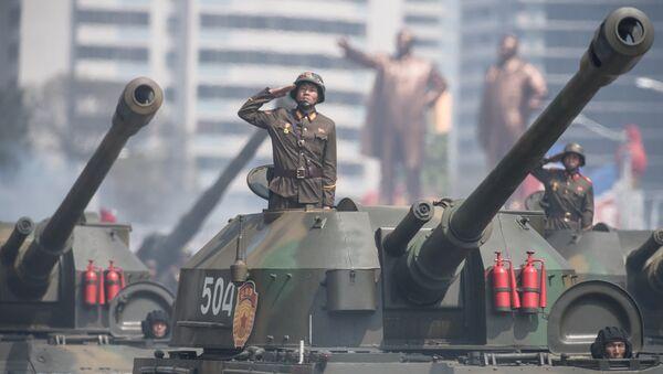 Kuzey Kore askeri - Sputnik Türkiye