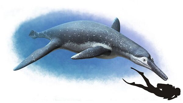 Rusya'da otobüs büyüklüğünde su altı sürüngen fosili bulundu - Sputnik Türkiye