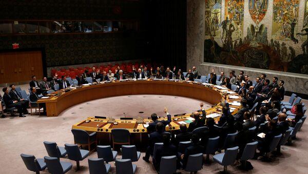 BM Güvenlik Konseyi - Sputnik Türkiye