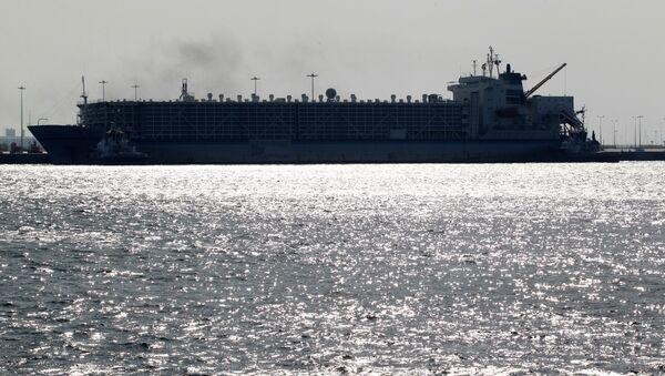 Katar-Hamad Limanı - Sputnik Türkiye