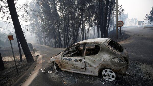 Portekiz'de orman yangını - Sputnik Türkiye