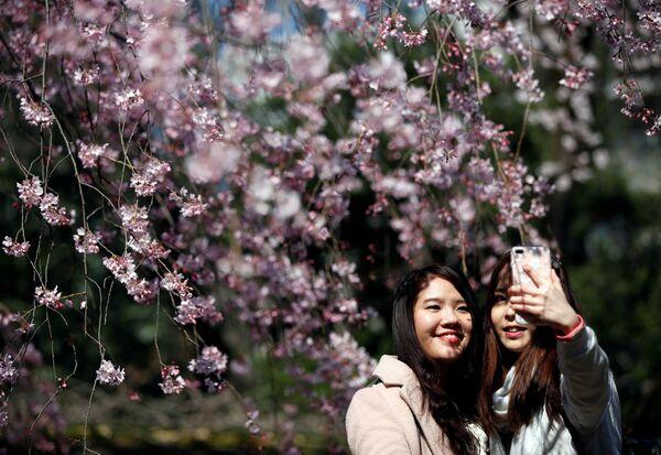 Japonya'nın başkenti Tokyo ise, Vancouver'i 7. sırada takip etti. - Sputnik Türkiye